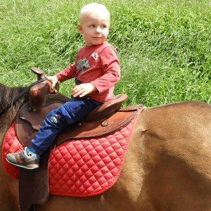 ralph-olsheskie-pony-ride