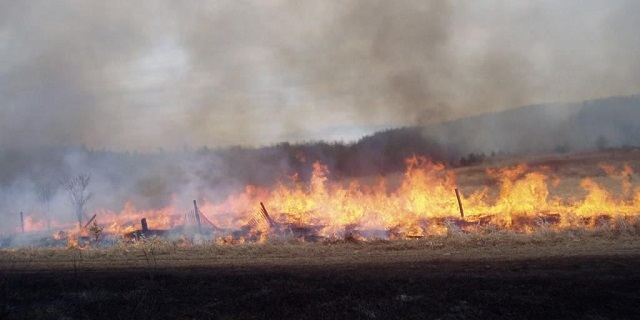 Facts about fire bans and wild fires