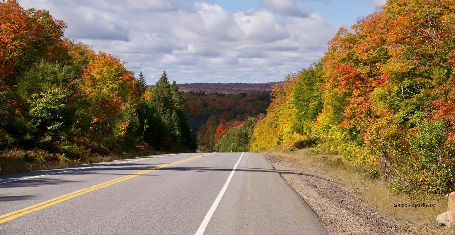 Killaloe OPP safe driving tips for fall colour tours