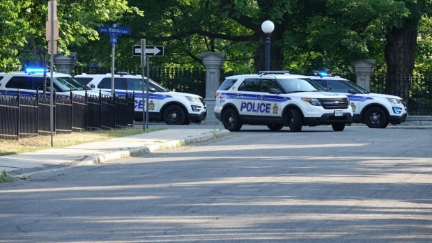 RCMP arrest armed man on grounds of Rideau Hall