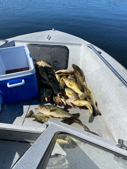 OPP tell anglers know your limits – or else